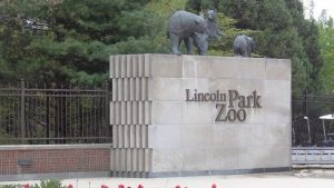lincoln park zoo chicago